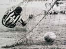 Garrincha-Alegria-do-povo.jpg